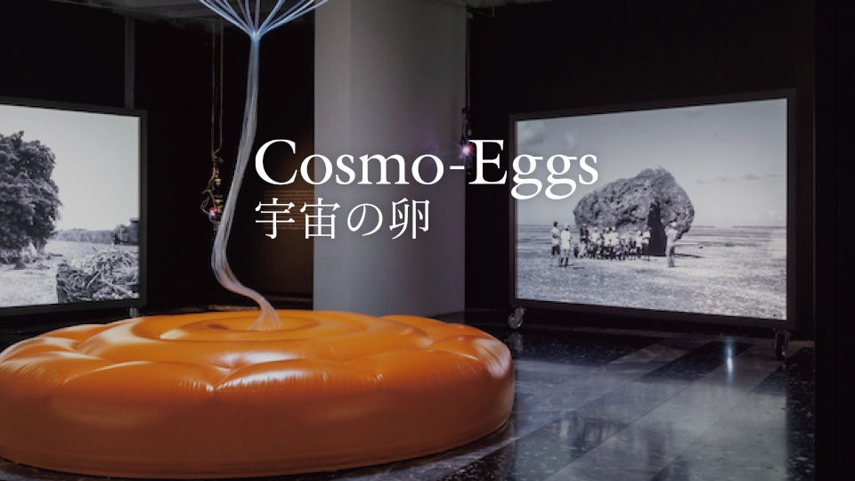 第58回ヴェネチア・ビエンナーレ国際美術展 日本館展示帰国展 Cosmo- Eggs| 宇宙の卵